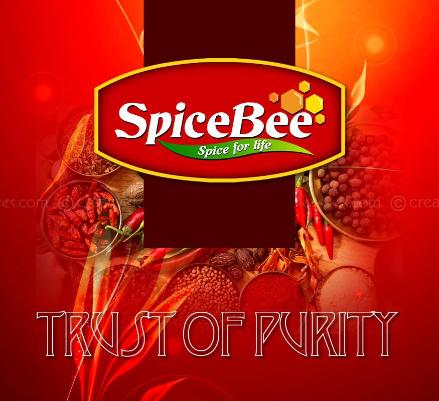 Kerala freelance logo design for SpiceBee
