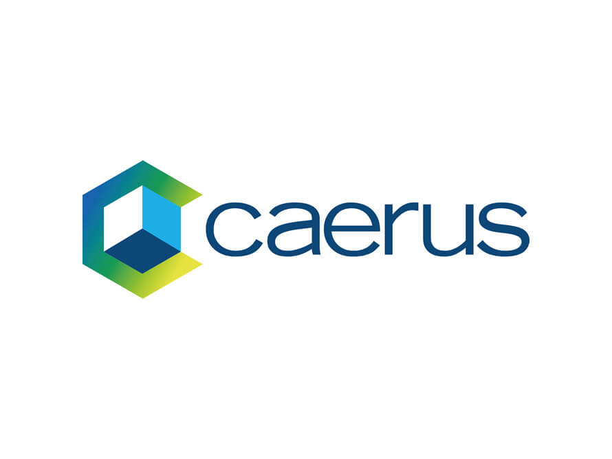 Logo and Branding designs for Caerus Infosys Limited