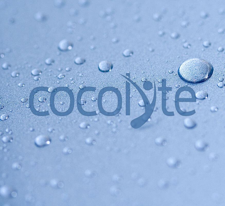 Kerala freelance Logo design for Cocolyte