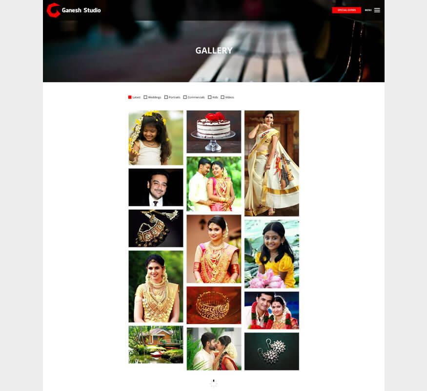 Kerala freelance wordpress designer