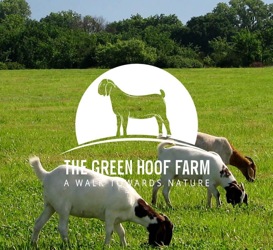 The Green Hoof Farm logo designed by Kerala freelance logo designer