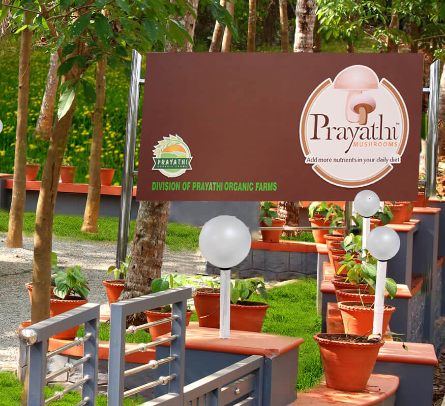 Kerala freelance branding designer for Prayathi Mushrooms