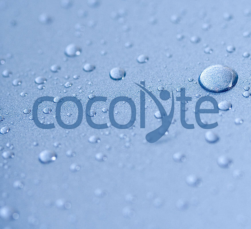 Kerala freelance Logo design for Cocolyte