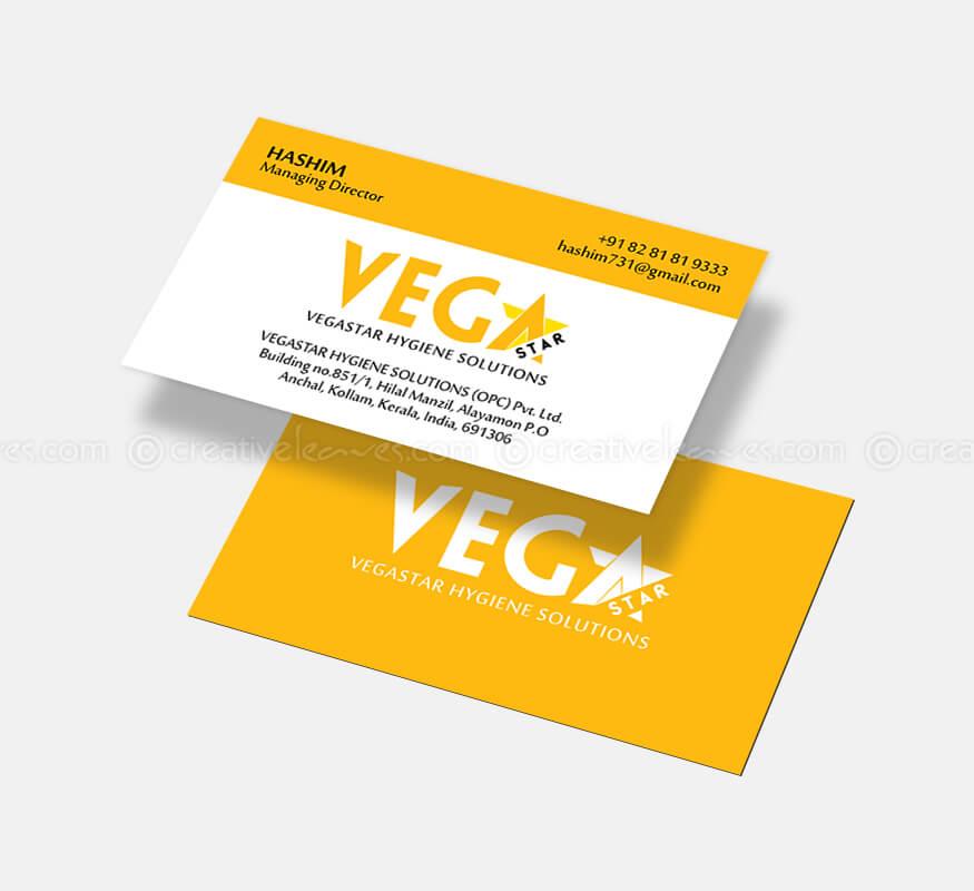 Logo & Branding designs for Vegastar Hygiene Solutions Pvt Ltd